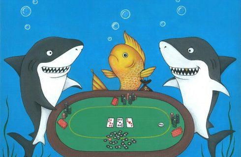 Рыба в покере: что это означает?